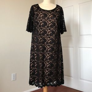 Connected Apparel Black Lace Dress Size 18W